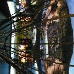 Siida Museum