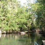 A hidden harbor in the jungle
