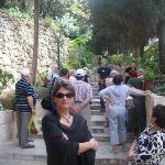 Entering the Garden at Gethsemane (setting of Christ sweating blood while praying, prior to his