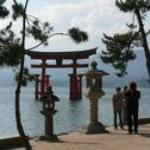 tori gate, miyajima island