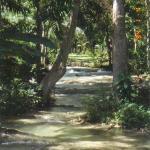 Dunns River Falls...Ochos Rios Jamaica