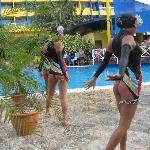 synchronized swimm show