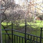 "the Cadogan ""garden"" from our suite"