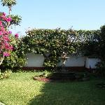 Casa Concepcion gardens