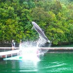 A cool jump