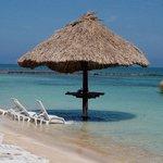 Coral Breeze Tours