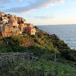 Charming Corniglia near sunset