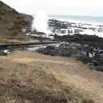 Near Cape Perpetua visitor center