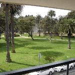 View from balcony facing park