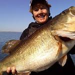 Huge Falcon Lake bass