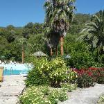Sultan Palas Hotel, Dalyan  - Lush landscaped Gardens