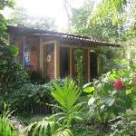 Photo of Esencia Nativa