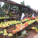 Best tasting fruits in the world natural organic