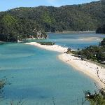 Beach in Abel Tasman