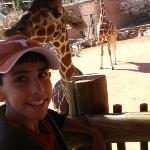 Xavier at the zoo, he just fed the giraffe