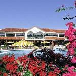 Imagen del Hotel, una gran vista a traves de las flores
