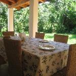 Prima colazione in veranda immersa nel verde