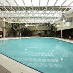 Crowne Plaza Louisville - Pool