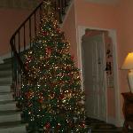 Superbe sapin Noël
