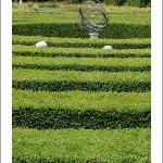 Lost in the maze at the nearby Château de Dampierre sur Boutonne