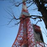 多厲害這東京鐵塔害我想到蘇子為你還沒還我我的東京鐵塔