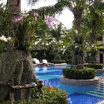 the gorgeous swimming pool