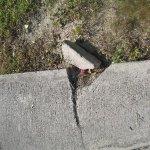 Broken concrete walkway