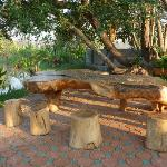 Peter's table made from the root of a tree