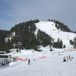 Grouse Mountain Resmi