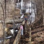 Amicalola Falls State Park-billede