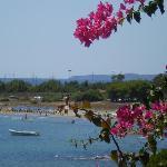 Photo of Corallo Vacanze