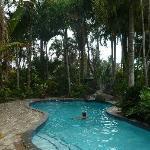 The pool at Ambala Gardens