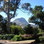 Helderberg Mountain seen from Stellenberg Road