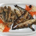 horse mackerel and sardines