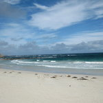 A beach on Kangaroo Island deserted except for the sea-lions and us.