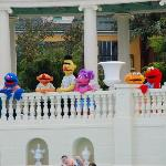 We all love the Sesame St characters