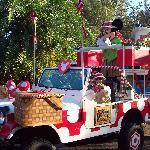 Jamming Jungle Parade