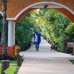 The beautiful walkway to the beach