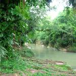 Jungle River that we zip lined over...