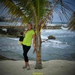 Lucea, Caribbean-me an Palm Tree