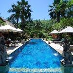Puri Mas Chakra Spa Pool area