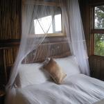 Foto de Wilderness Bushcamp