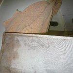 風呂場のカビたカーテン、破れたタオル