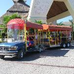 Resort Transportation