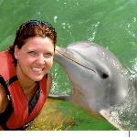 Dolphin interaction on Catamaran