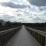 Ocean Hammock Park Walkway