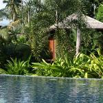 Our villa, by the pool with a view to the beach and surrounded by jungle!