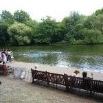 Bilde fra St. James' Park