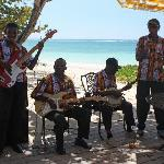 Cool Mento band at Bluefields lunchtime