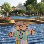 Flat Stanley at the pool